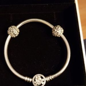Pandora Moments Poetic Blooms Clasp Snake Chain